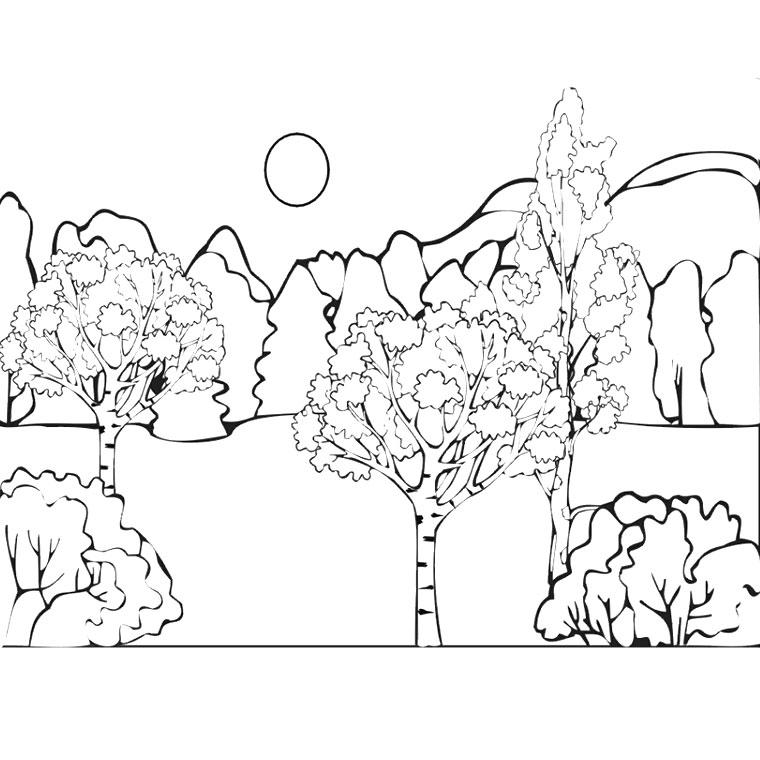 Bosque #29 (Naturaleza) - Páginas para colorear