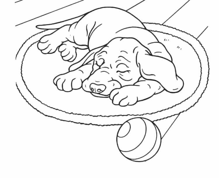 Perro #51 (Animales) – Páginas para colorear