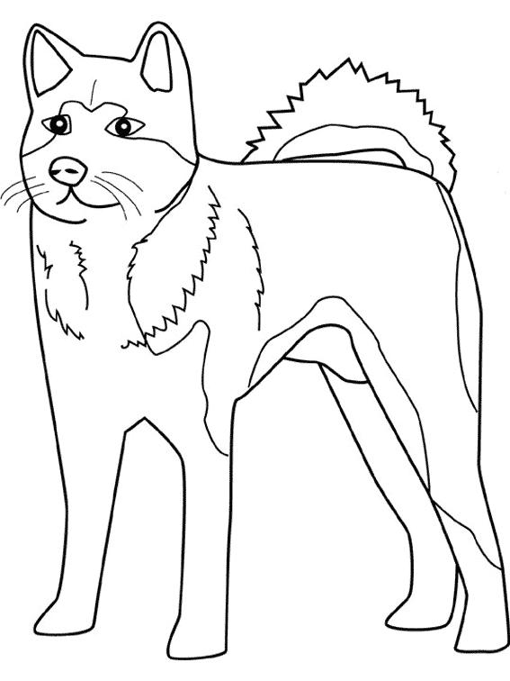 Perro #62 (Animales) – Páginas para colorear